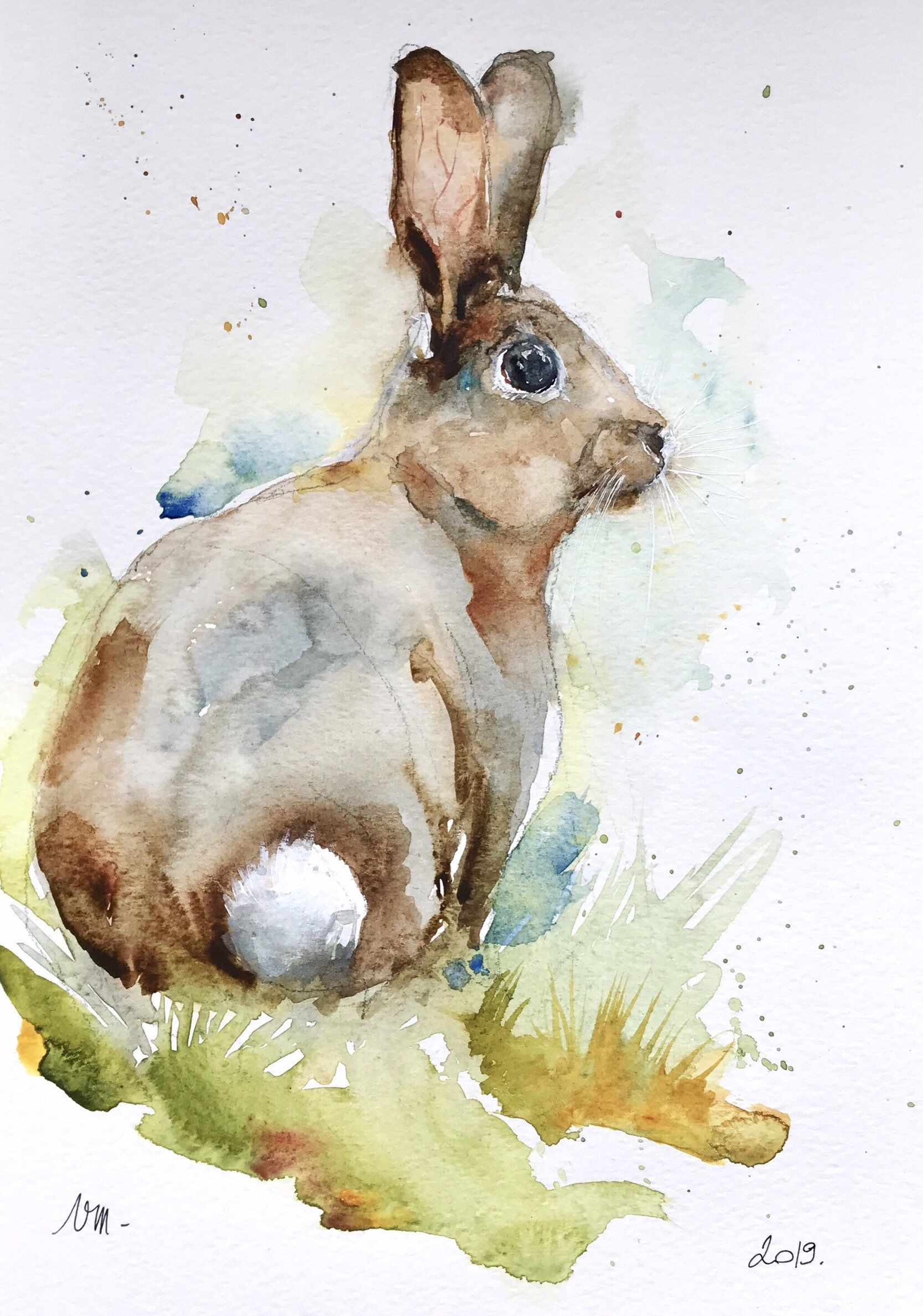 Epingle Par Diane Hammar Sur Watercolor Critters Animaux D