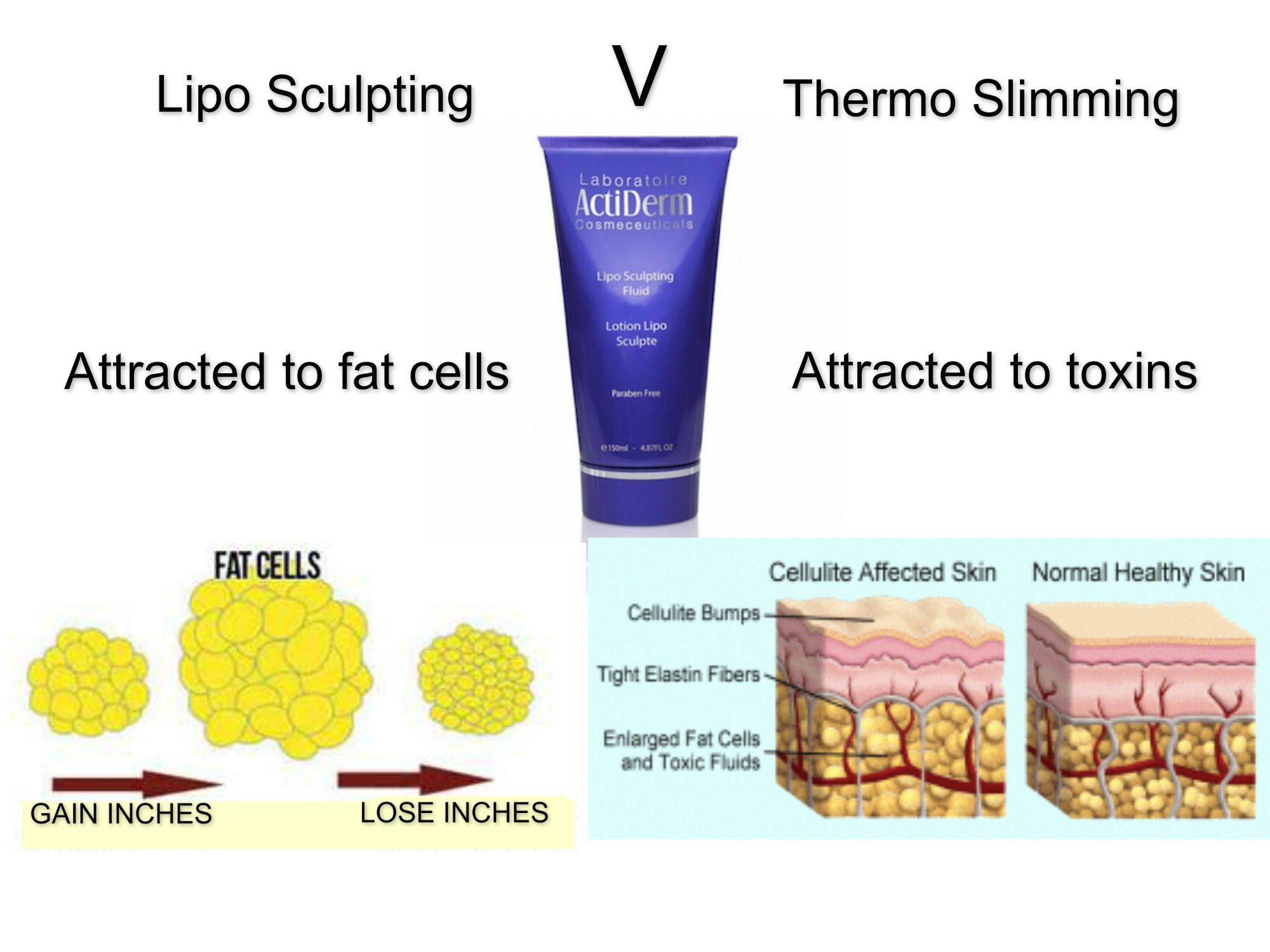 acti labs thermo slimming)