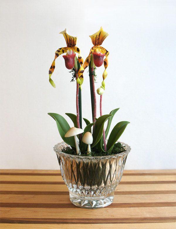 Roses In Garden: Miniature Lady Slipper Orchid Flower Arrangement In