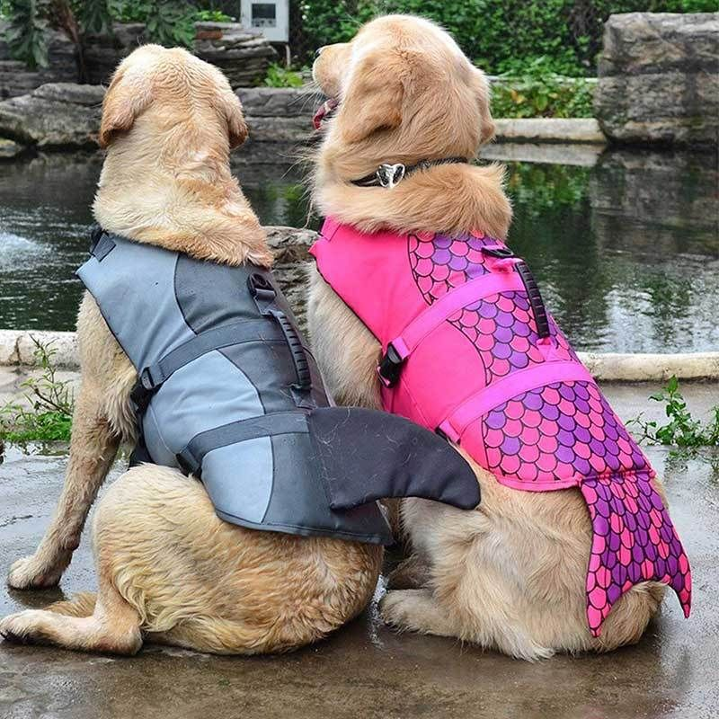 Two Golden Retrievers Wearing The Grey Shark And Purple Mermaid Design Safety Dog Life Jackets Salty Paws Dog Life Vest Big Dog Clothes Dog Swimming
