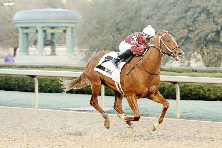 Tapiture Wins Southwest Stakes At Oaklawn Horse Racing
