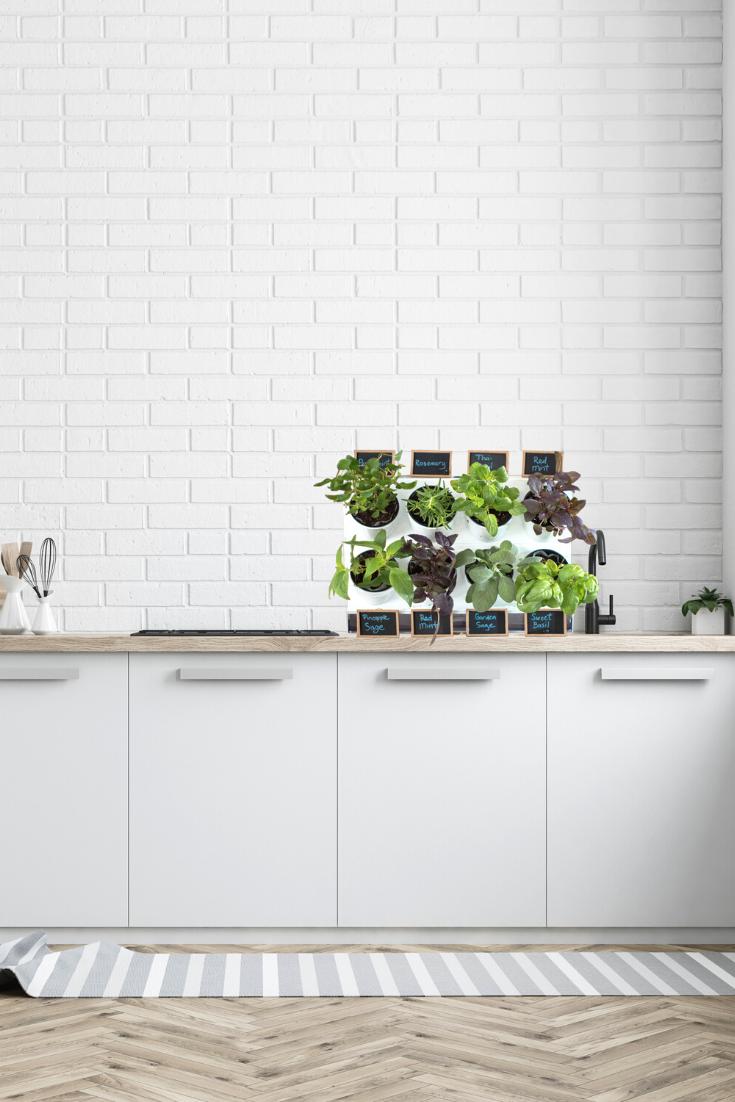 Pixel Kitchen Countertop Garden In 2020 Herb Garden In 400 x 300