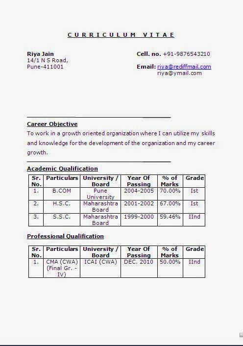 Curriculum Vitae Template South Africa Sample Template Example