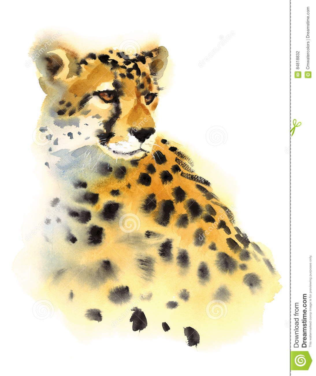 Cheetah Watercolor Wild Animal Illustration Hand Painted