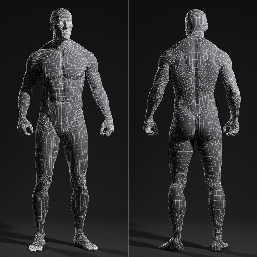 3d Male Body Wireframe Human Anatomy In 2018 Pinterest Anatomy