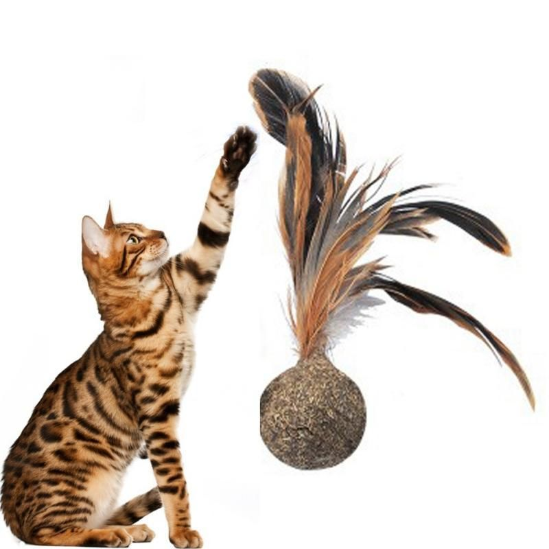 Cat Toy Catnip Ball With Feather Mother Of Bengals Catnip Pets Cats Pet Collars Cat
