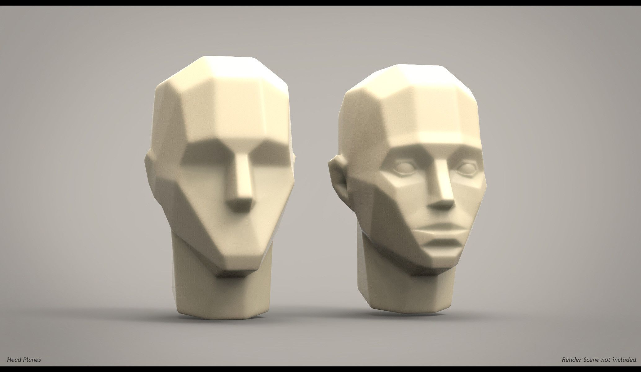 http://www.turbosquid.com/3d-models/3d-model-planes-head-anatomy ...