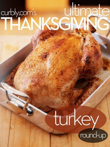 Photo of Ultimate Thanksgiving: Turkey Recipe Round-Up