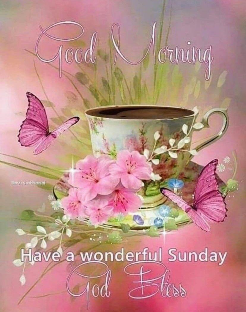 Good Morning Wonderful Sunday Good Wishes Sunday Morning Quotes