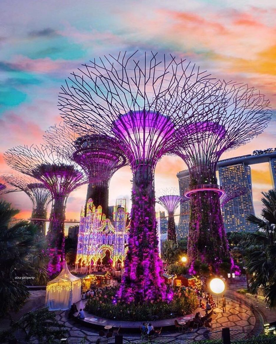 Supertree Grove Giant Trees Are Part Of Gardens By The Bay Supertrees Are Artificial Structures That A Singapore Tourist Attractions Singapore Travel Tourist