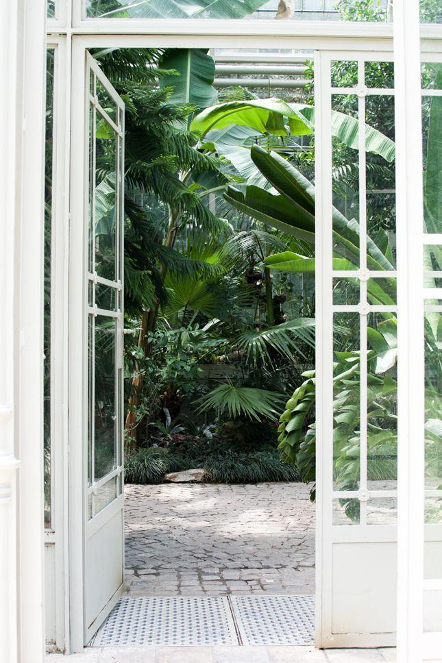 Bildergebnis für Atrien  #atrien #bildergebnis #botanicgarden