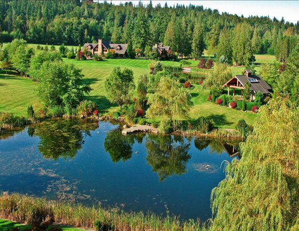 Large pond and larger back yard that 39 s a pavilion on for Large pond design