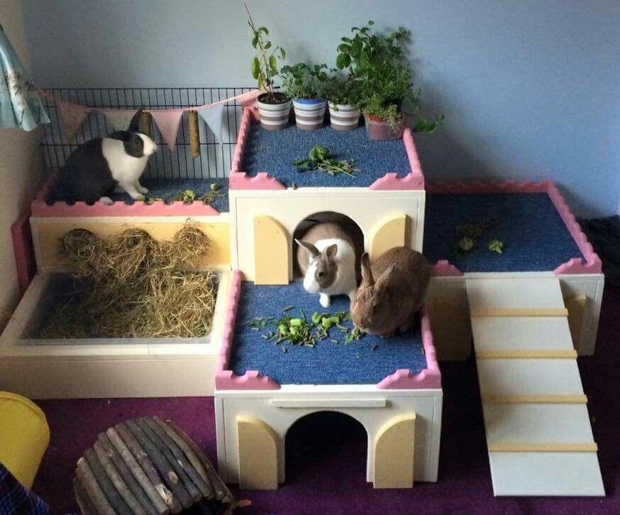 Bunny Castle Kaninchen Gehege Kaninchen Kaninchengehege