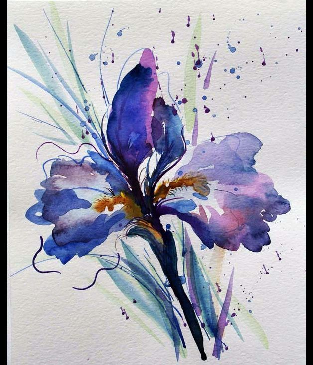 Iris Original Aquarelle Peinture Aquarelle Originale De Fleur D