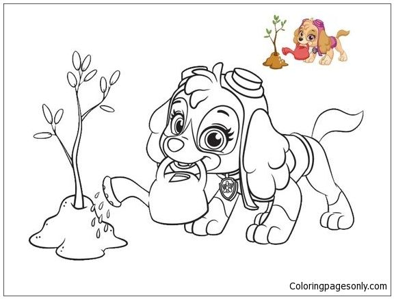 Skye From Paw Patrol 2 Coloring Page | Dog coloring book ...
