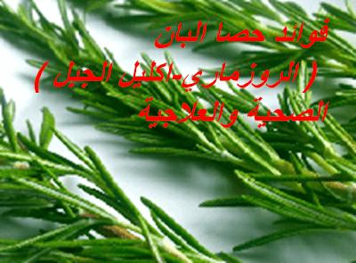فوائد حصا البان الروزماري اكليل الجبل الصحية والعلاجية Herbs Parsley