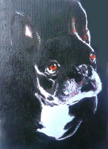 ACEO-DOG-BOSTON-TERRIER-OIL-PAINTING-2-1-2-INCHES-BY-3-1-2-INCHES