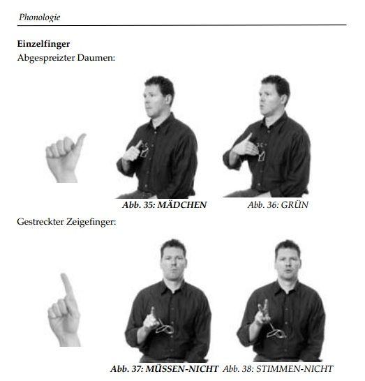 Grammatik der Deutschen Gebärdensprache aus der Sicht gehörloser Fachleute auf www.signum-verlag.de