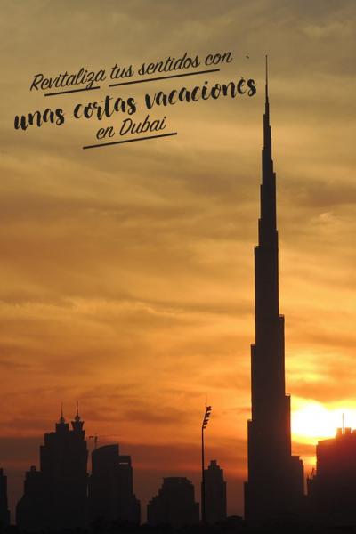 Las Mejores Excursiones De Un Día Desde Dubai Emiratos Arabes Dubai Emiratos Arabes Viajes En Crucero