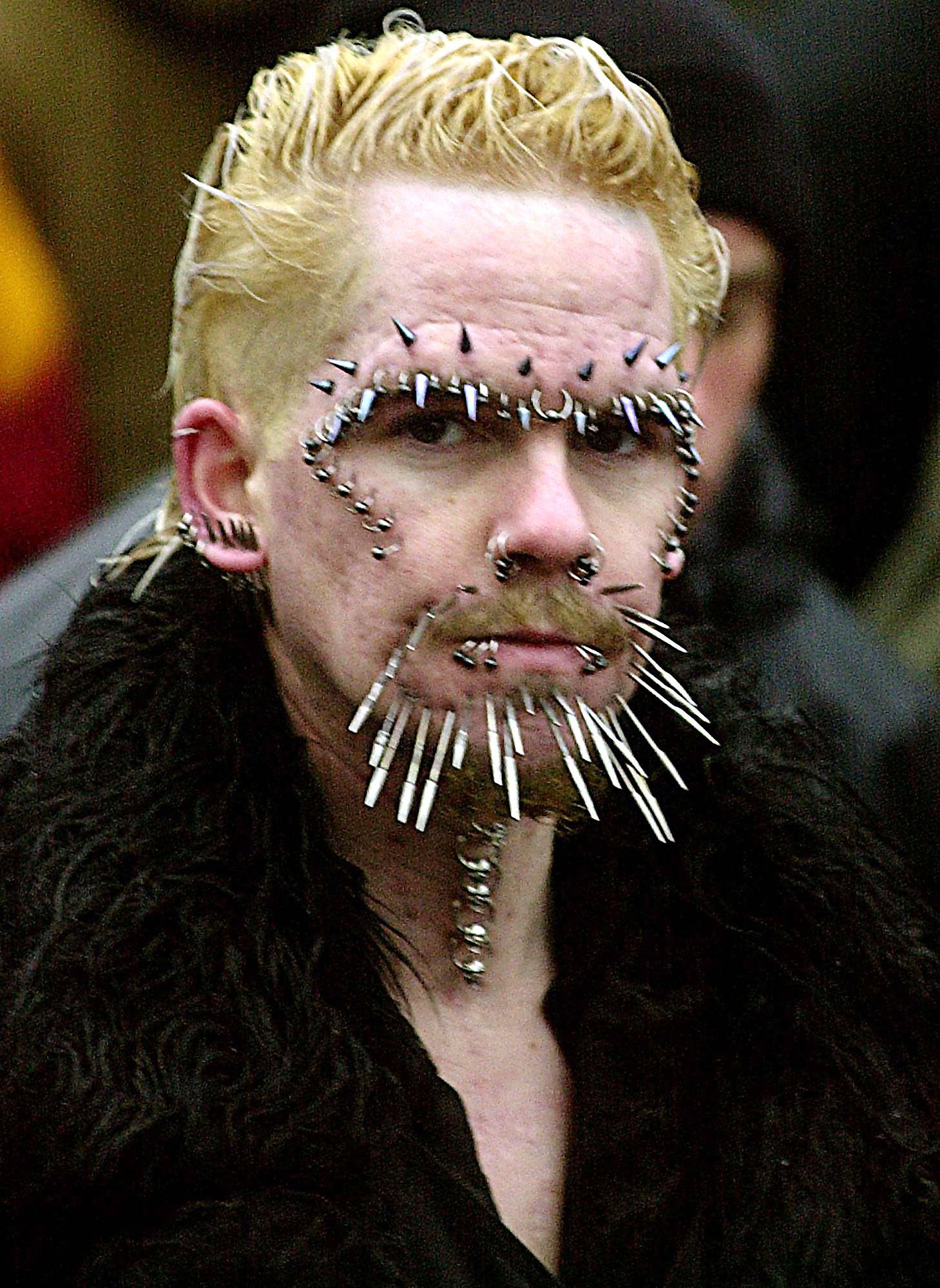 Piercing albert How to