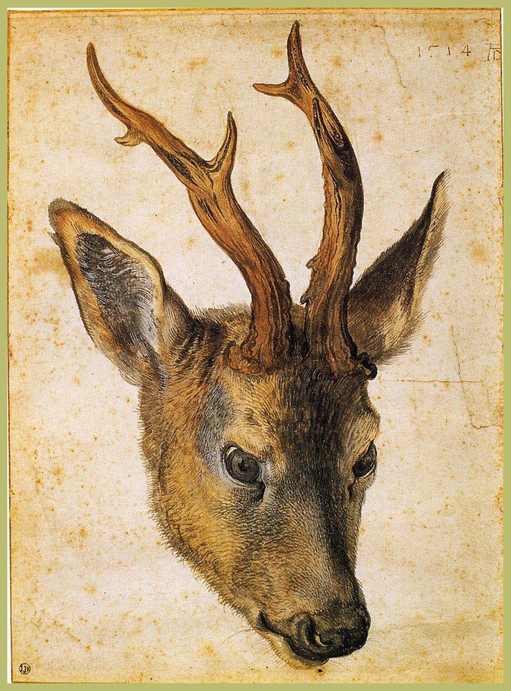 ArtArte Imagem Semanal: Dürer e o mundo animal http://arteseanp.blogspot.com