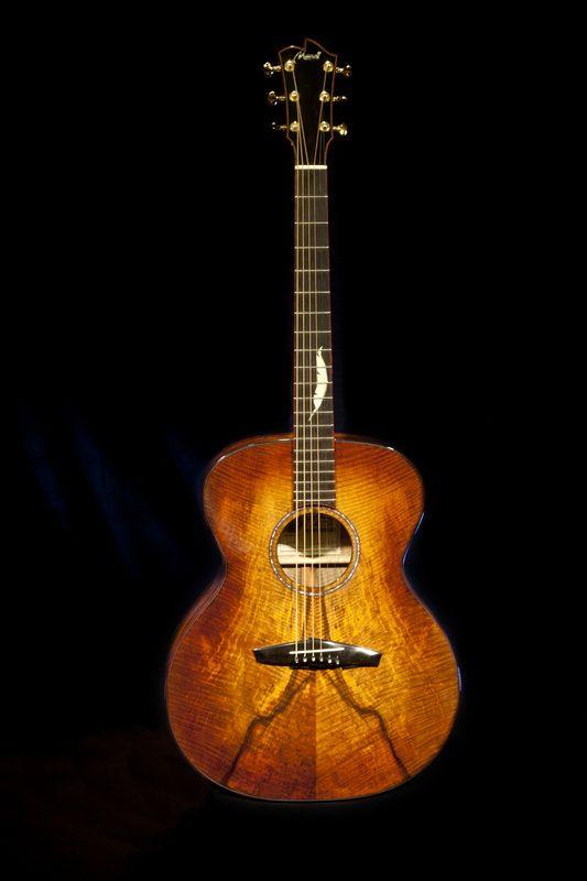 monster guitar. Mastodon feather design by Jordan Merrill