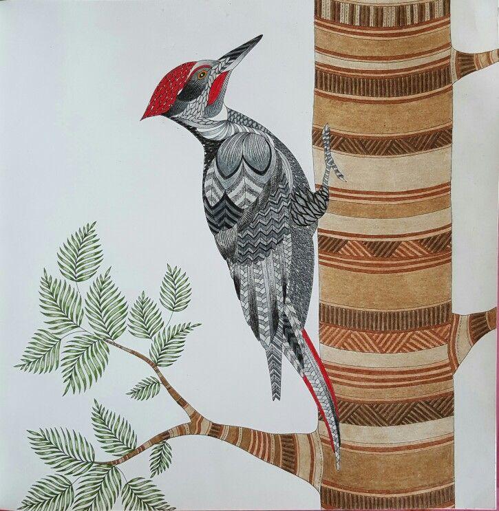 Woodpecker From Millie Marottas Animal Kingdom