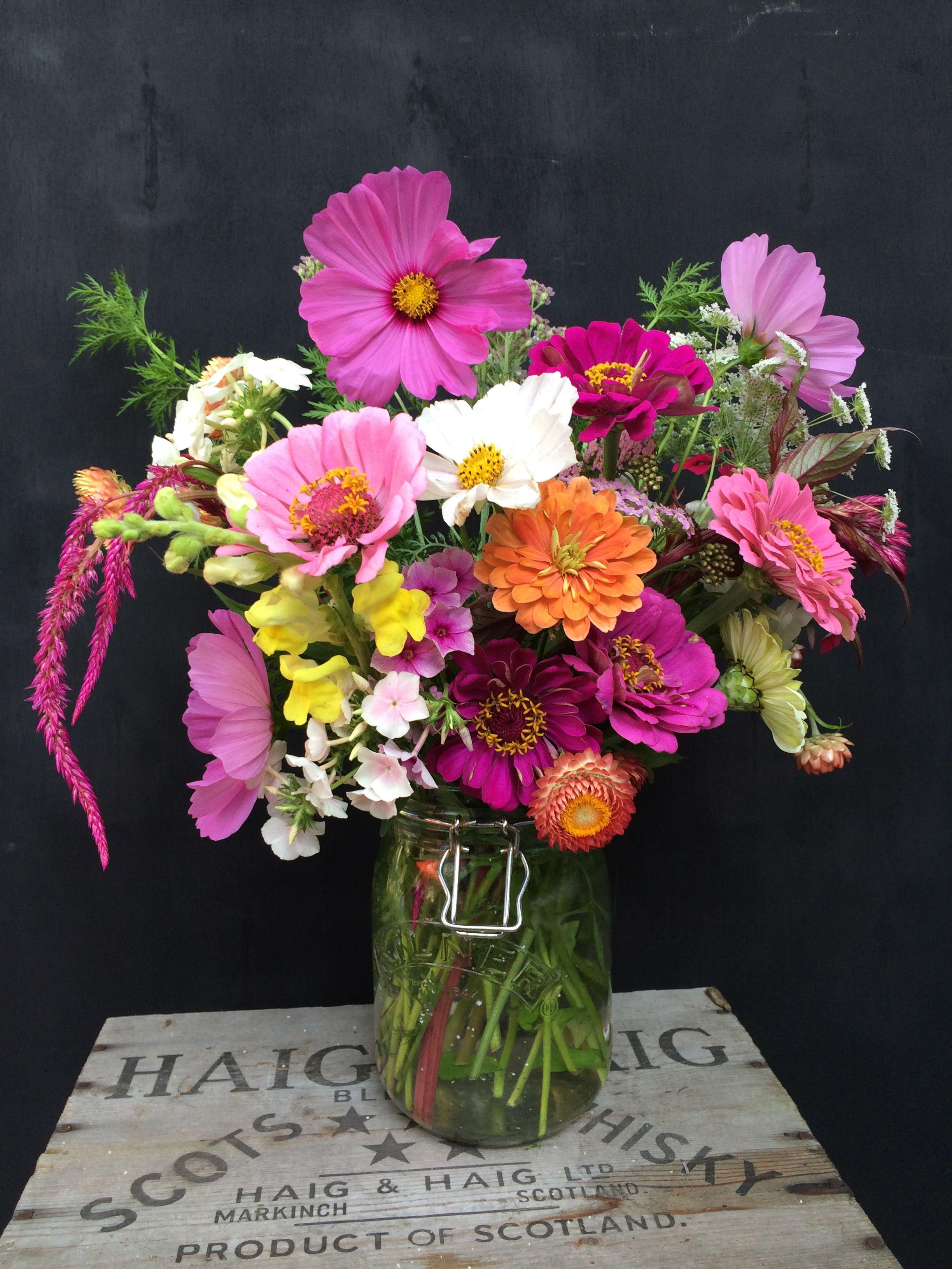 Cut Flower Bouquet Celosia Cosmos Sweet Annie Zinnia Ammi