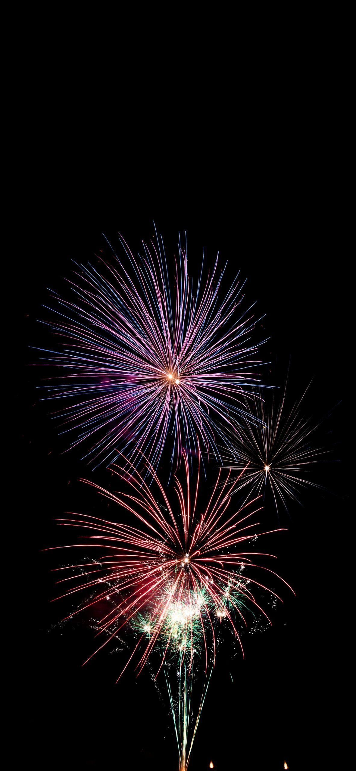 Longwood Gardens New Years Eve 2019
