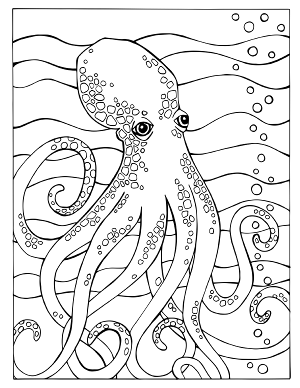 Fortuna Coloring Book Octopus Page animal coloring