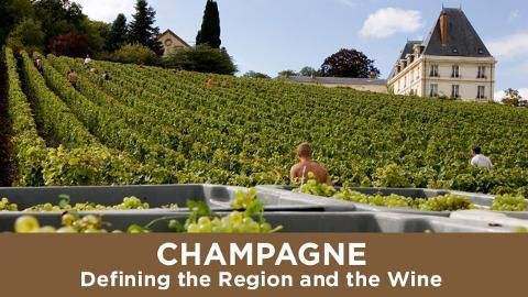 Not all bubblies are the same. Learn the factors that distinguish Champagne (the region and the wine).