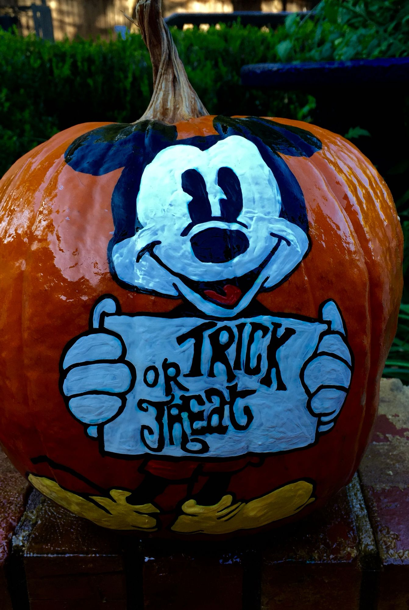 Trick or Treat Hand painted pumpkin, Pumpkin halloween