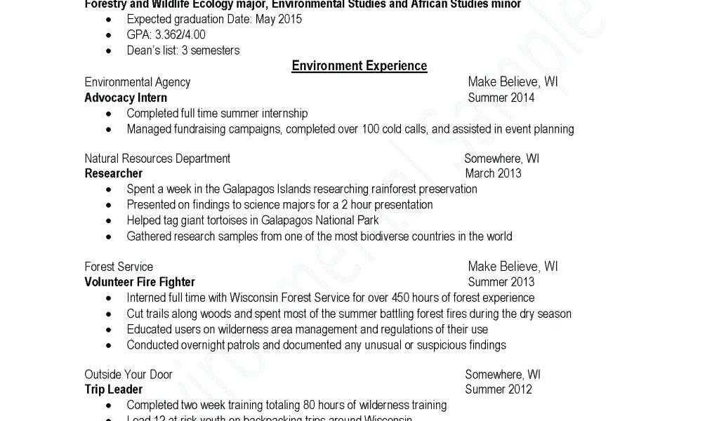 76 Unique Photos Of Sample Resume For Law Enforcement Promotion