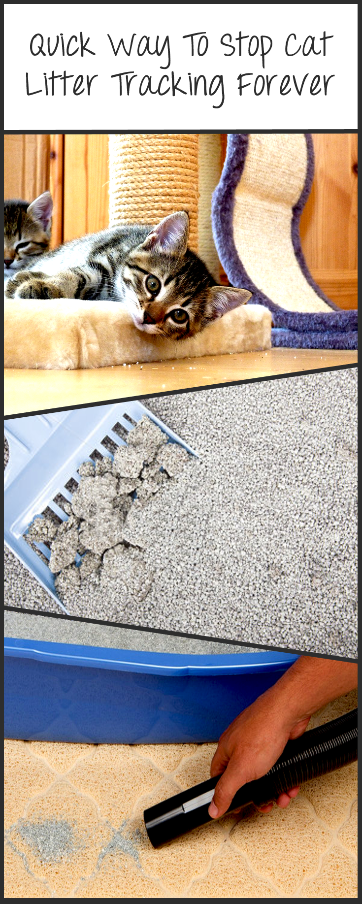 Here's A Quick Way To Stop Cat Litter Tracking Forever. http://www.easyologypets.com/blogs/news/89533126-here-s-a-quick-way-to-stop-cat-litter-tracking-forever See, if you've been living with cats for years like me, then you know they can be quite the slob. They're clean freaks when it comes to their bodies and their litter boxes, but other than those two areas, they just shrug their tiny shoulders when they see the mess they created after going to the bathroom.
