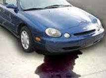 There S A Red Fluid Underneath My Vehicle Is My Transmission Fluid Leaking Most Likely It S Transmission Repair Transmission Shop Transmission Repair Shop