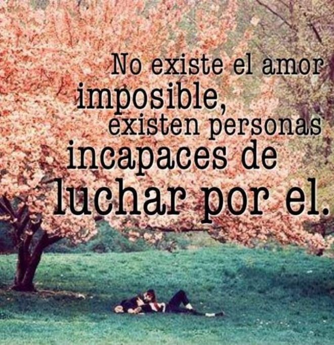 No Existe Amor Imposible Http Www Poetainexperto Com Frases