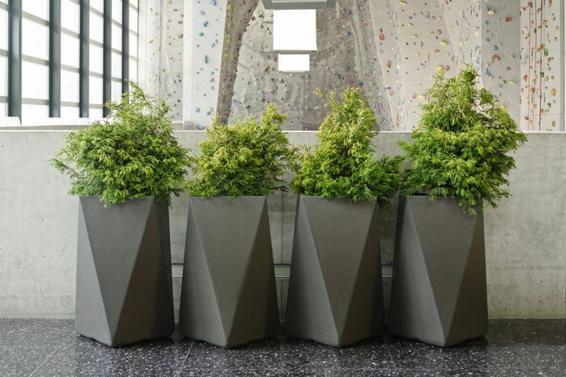 Pflanzkubel Aus Beton Funktionale Gestalterische Highlights Grands Pots De Jardin Jardiniere Beton Pots De Plantes D Interieur