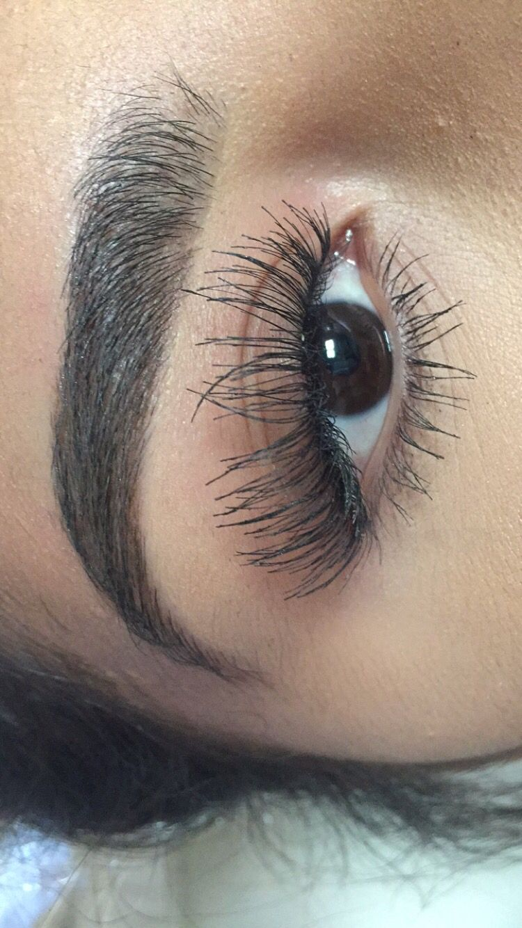 Best 25 salon perfect lashes ideas on pinterest makeup for Salon 615 lashes