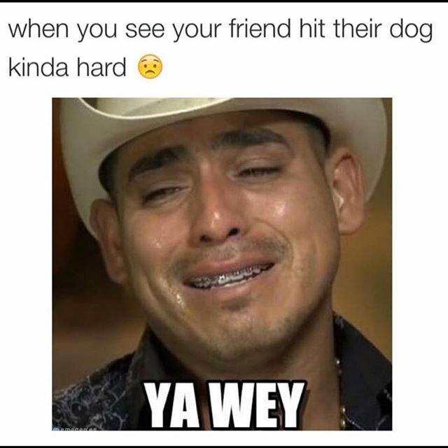 d5e7db748a9d54595d93a873b4dc8cb0 talarijane laughs pinterest mexicans, mexican memes and memes