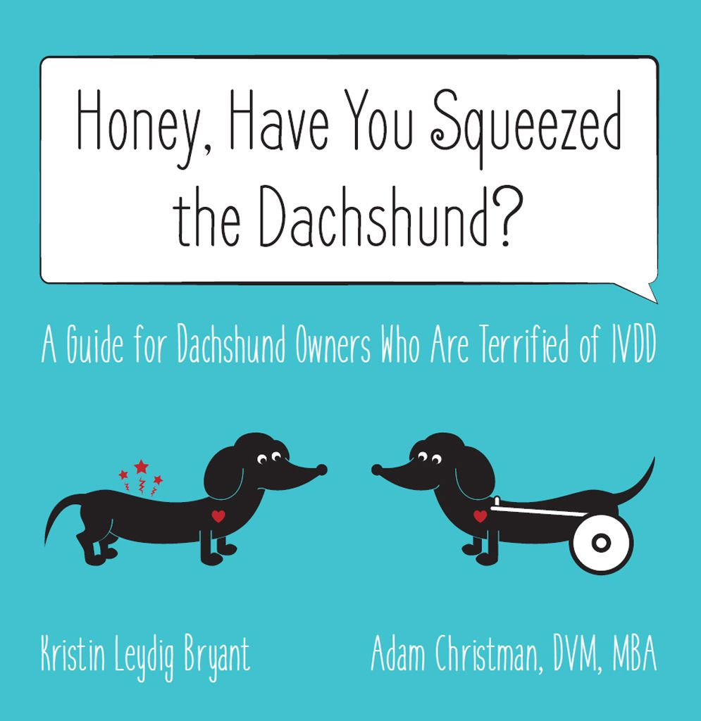 Honey Have You Squeezed The Dachshund A Guide For Dachshund