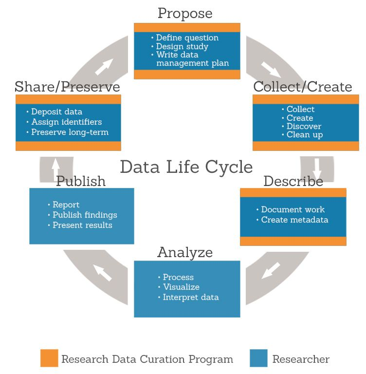 Data Lifecycle Data Business Intelligence Management