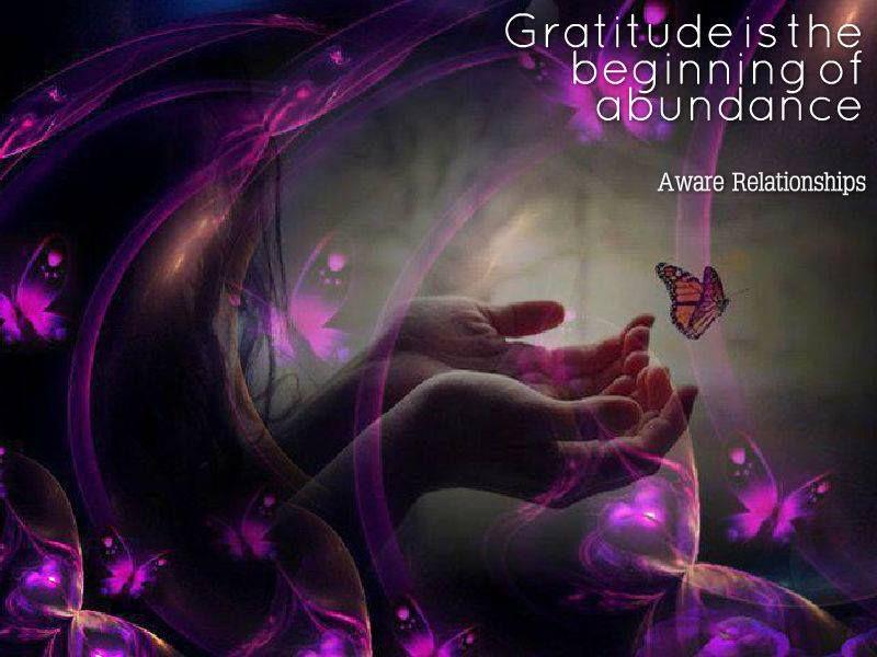 Gratitude is the beginning of abundance ☼ Martin Soulreader Aware Relationships
