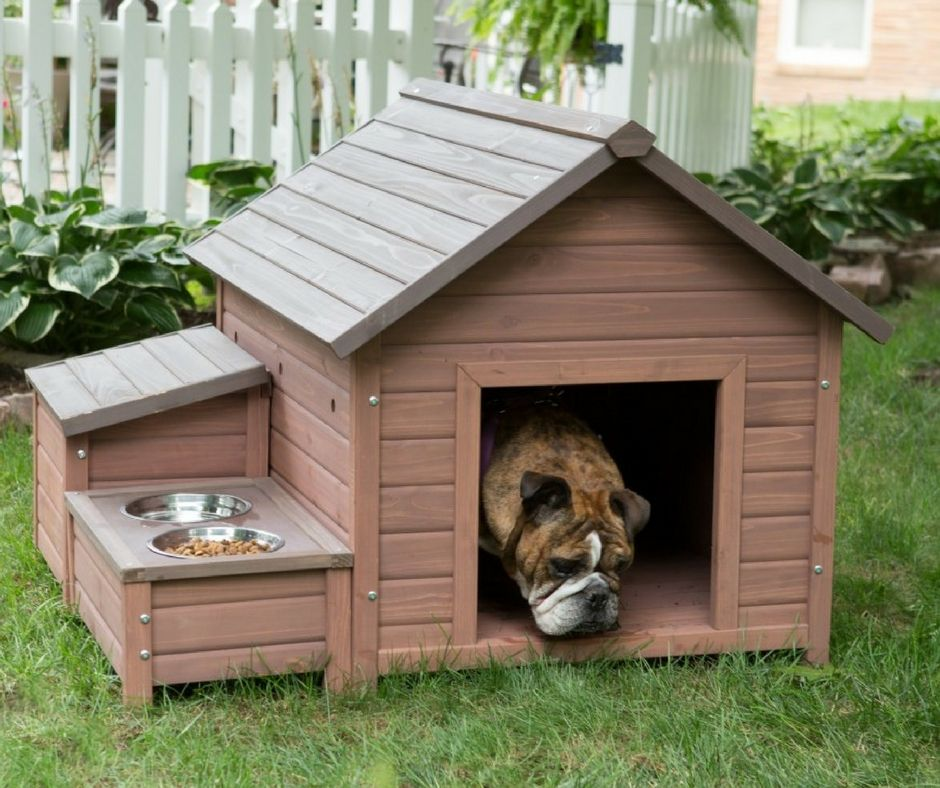 The 25 Best Unique Dog House Designs Wood Dog House Wooden Dog