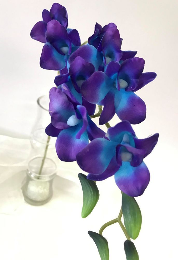 Latex touch singapore blue purple orchid dendrobium orchids flower latex touch singapore blue purple orchid dendrobium orchids flower silk flowers ebay silk orchids mightylinksfo