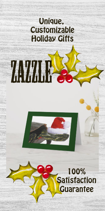 Turtle Santa Holiday Card