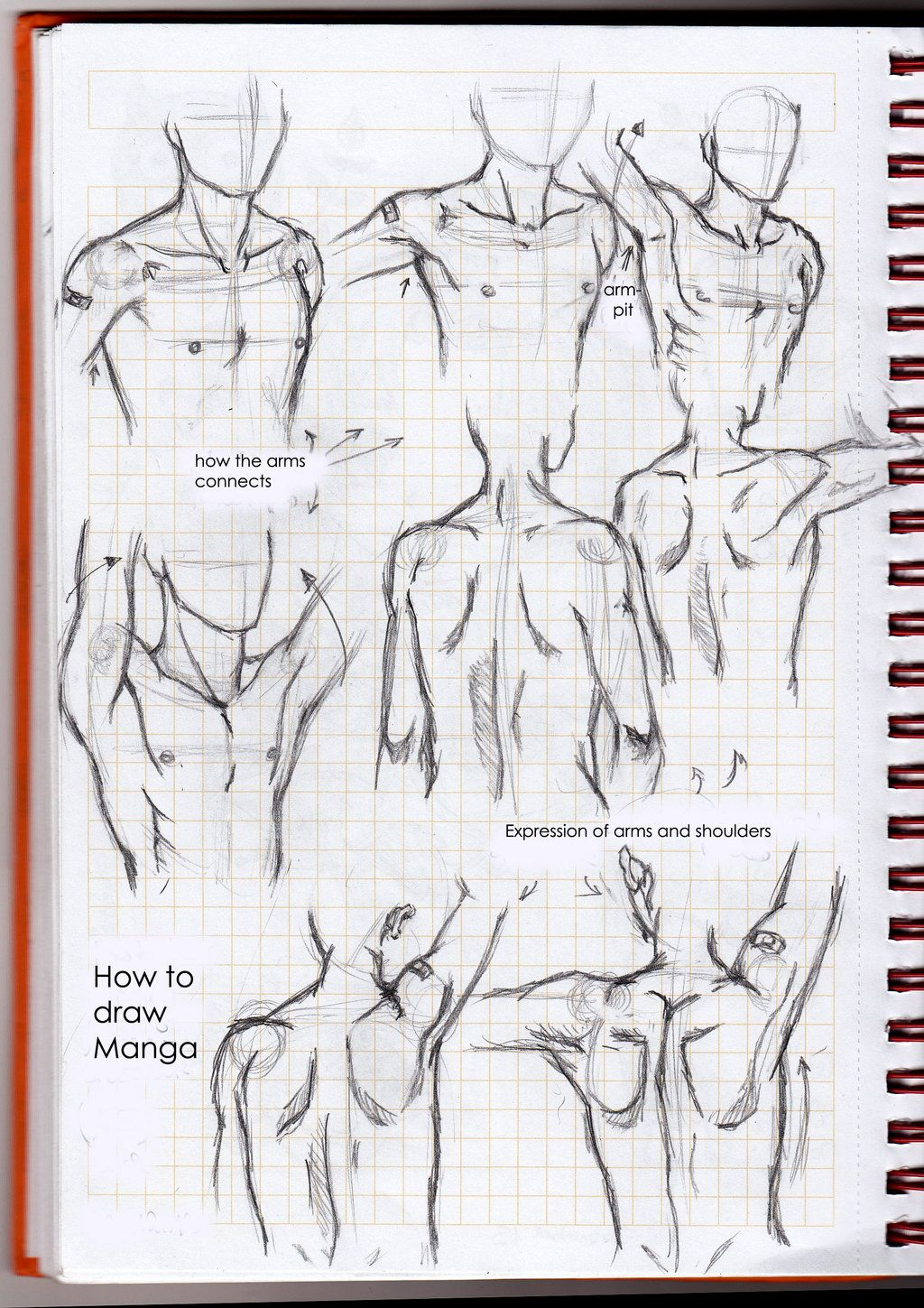 How To Draw Manga: Neck, Arms And Shoulders By Lunedelaneigeiantart