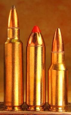 284 win mag left -  450 Bushmaster - 30RAR right | Ammo
