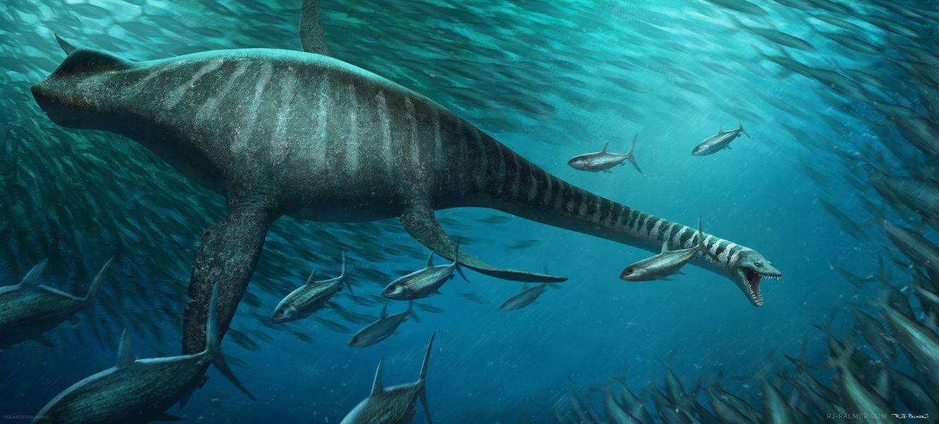 кляпа водоплавающий динозавр картинки актуальные новости египта