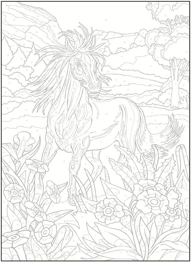 Creative Haven Horses Color By Number Coloring Book Coloring Pages