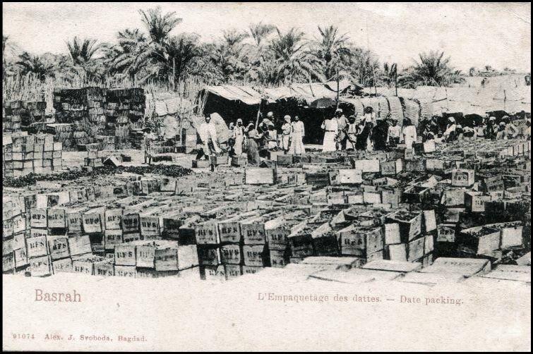 البصرة تصدر التمور منذ أكثر من قرن سنة 1915 Baghdad Iraq Baghdad Historical Pictures